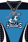 Nighthawks2019.png (21 KB)