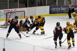 Magnificent phrase Midget aaa patriotes for the